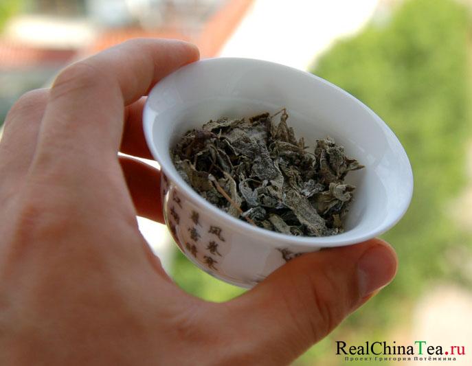 Сухой лист Куганьлу всегда покрыт белым налетом. Кроме того, Куганьлу собирается и высушивается вместе с веточками.