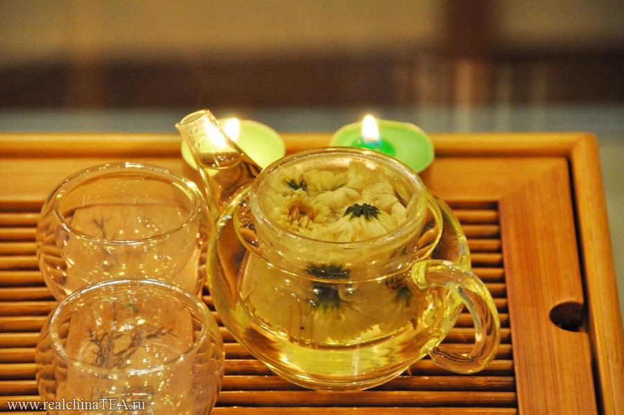 Ароматная китайская хризантема. Ее лучше всего заваривать в стекле.
