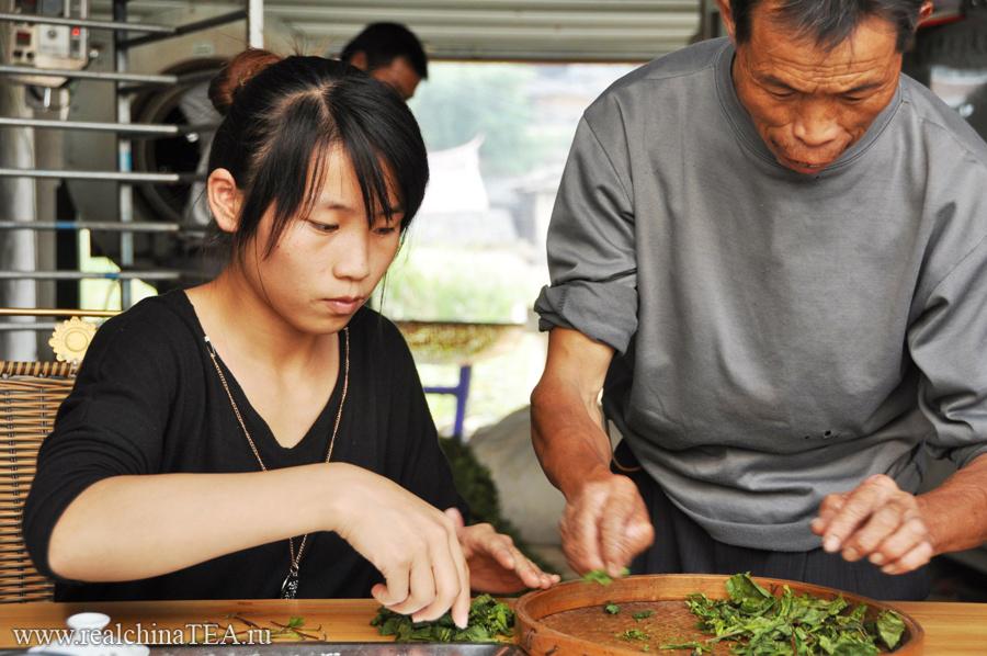 Это молодая девушка и ее отец в одной из китайских деревень,  неподалеку от города Аньси. За их спиной стоят центрифуги и станки по обработке чая Тегуаньинь. И они угощают нас свежим, только что приготовленным, чаем. Он еще теплый после прожарочного шкафа. И тут стоит такой невероятный аромат! Посмотрите на их руки и на их лица. Тут все,  как есть, все по-настоящему. Вот это я называю RealChina.