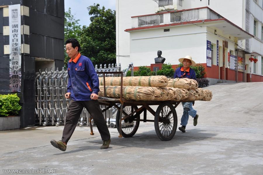 Этот снимок со знаменитого завода - Байшаси - по производству черного чая в Китае. Рабочие вывозят из цеха только что упакованный чай на просушку. Чаще всего черный чай можно встретить вот в таких гигантских цилиндрах. Я в шутку называю их фаллосами. Такой чай набирает обороты в Китае, но практически не продается на российском рынке.