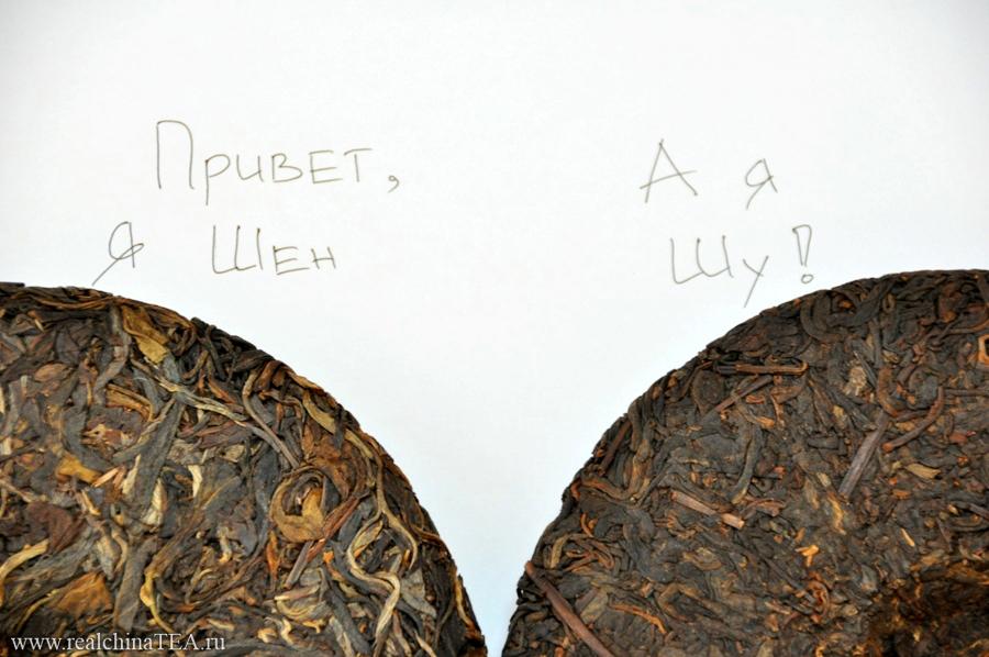 Внешне отличить Шен от Шу Пуэра совсем не сложно. У светлых Шен Пуэров лист крупный, волнистый и менее спрессованный. У темных Шу Пуэров лист почти черного цвета, а через несколько лет хранения он превращается в монолит.