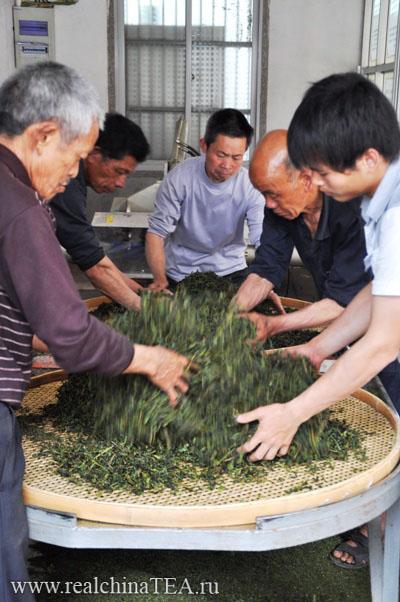 Производство чая Тегуаньинь