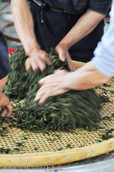 Так, руками производят самые лучшие сорта чая Тегуаньинь