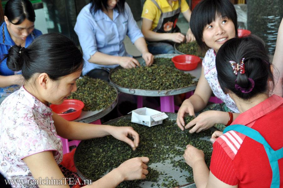 Китайские девушки перебирают Тегуаньинь