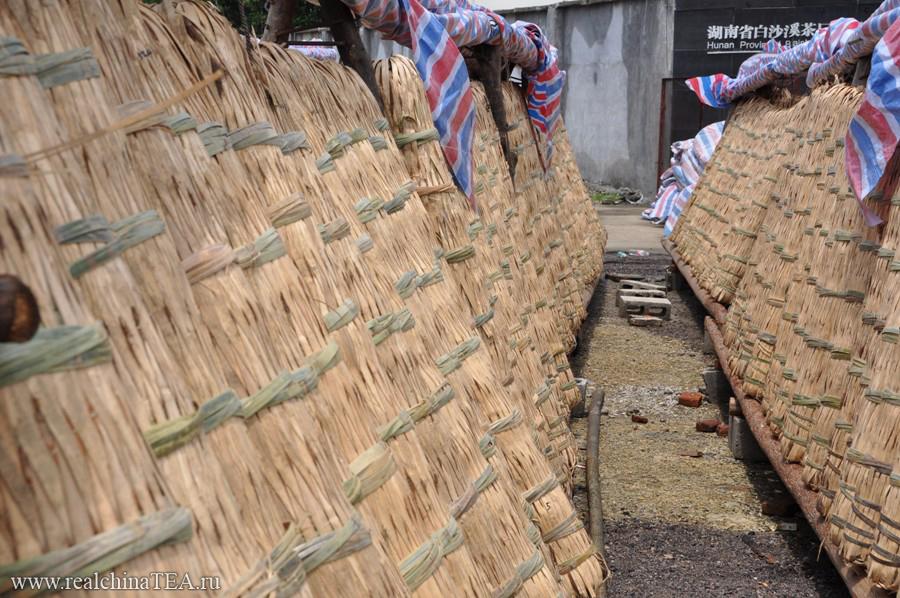 А это открытый склад готовой продукции. В таких гигантских плетеных цилиндрах чай высыхает под открытым небом, прежде чем разойдется покупателям по всей стране.