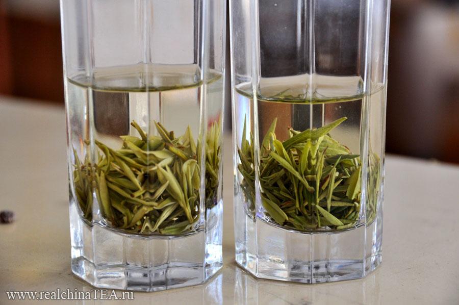 """Эти два стакана, как выстрел дуплетом. В меня. Этот кадр я сделал уже в другом городе - в Аньцзи (там выращивают знаменитый """"белый чай""""). Но это тоже провинция Чжэцзян."""