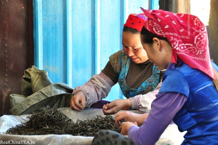 Местные тетушки перебирают чайное сырье перед продажей его на фабрику. Лаобаньчжан. www.realchinatea.ru