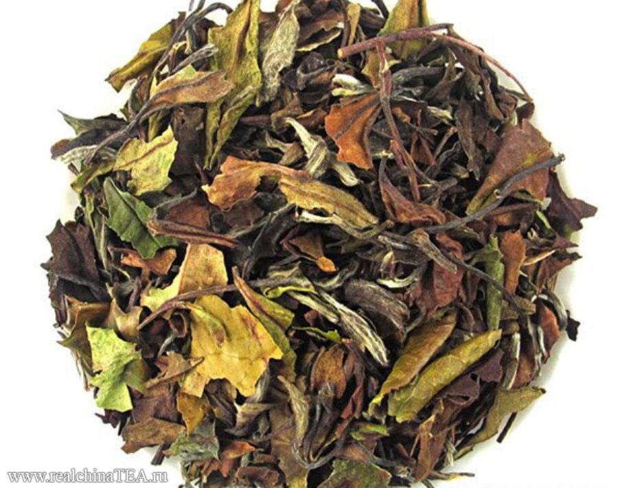 Гунмэй - это тоже белый и тоже удивительный чай.