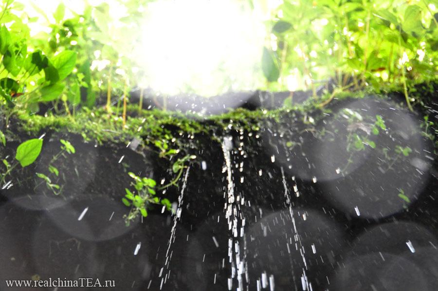 Капающая сверху вода, мне кажется, это символ Уишаня.