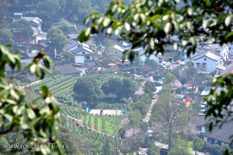 Чайная деревня в провинции Чжэцзян