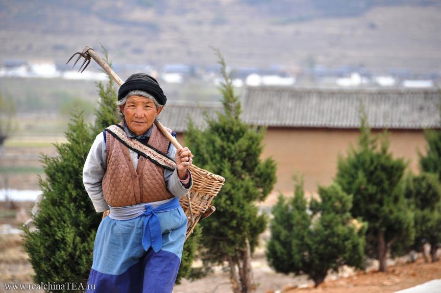 В Шаси очень позитивный народ. Да и во всей провинции Юньннань!
