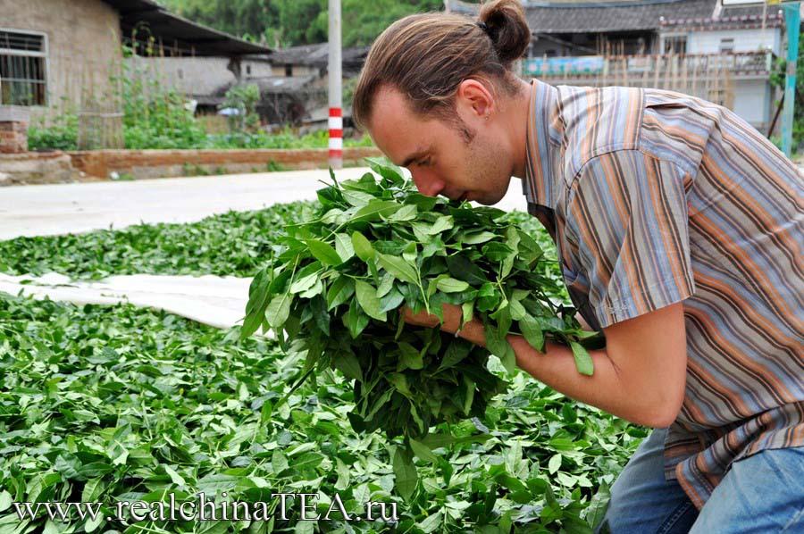 Григорий Потемкин свежий чай www.realchinaTEA.ru