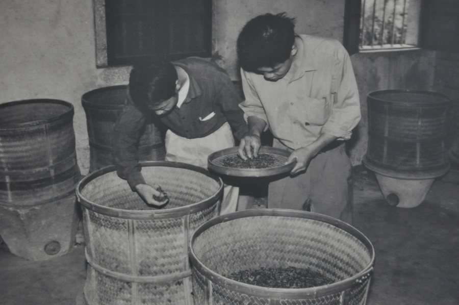 Вы можете подумать, что чайные мастера - это большие эксперты по чаю. Не совсем так. На самом деле они великолепно разбираются в своем собственном чае, который обрабатывают всю жизнь. Но совсем не понимают в чаях из других провинций. (Это фото я переснял в музее чая г. Аньси. Это 1965 год).