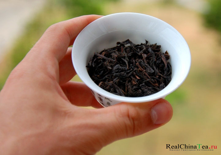 Чай Дахунпао в городе Уишьань, Фуцзянь
