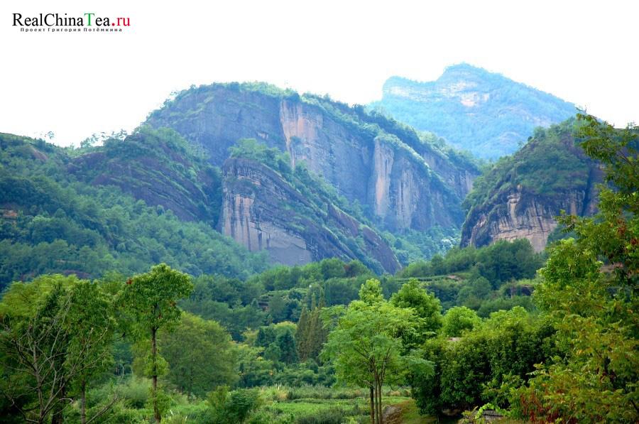 Уишань, Фуцзянь, Китай, www.realchinatea.ru