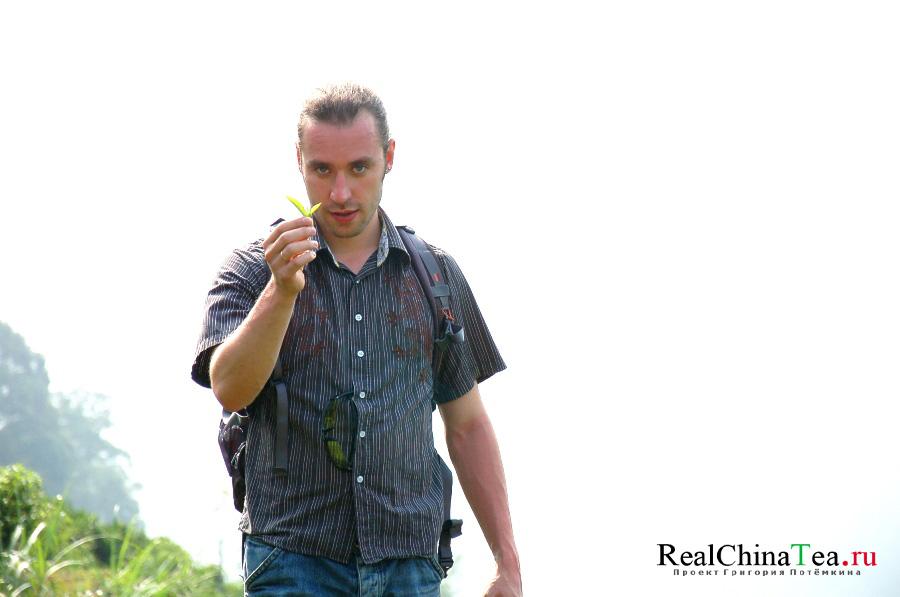 Григорий Потемкин проект www.realchinatea.ru все о китайском чае