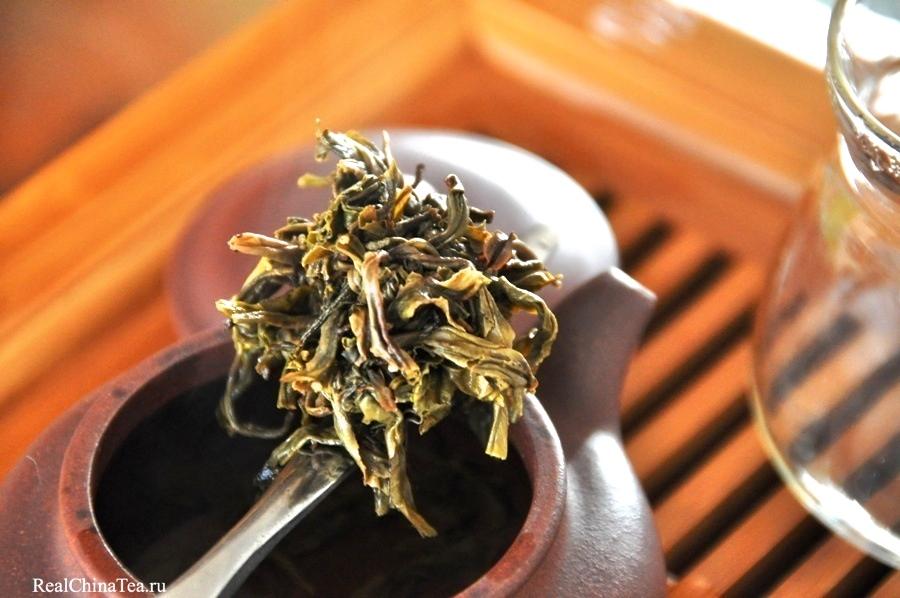 Я обычно так не делаю, но… если достать заваренный чайный лист из чайничка, он удивит вас своей симпатичностью.