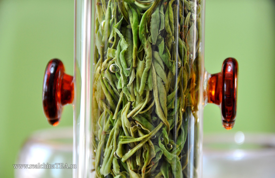 Очень круто заваривать Аньцзи Байча в стеклянной посуде. Так вы сможете увидеть, как раскрывается каждая чаинка. Попробуйте.