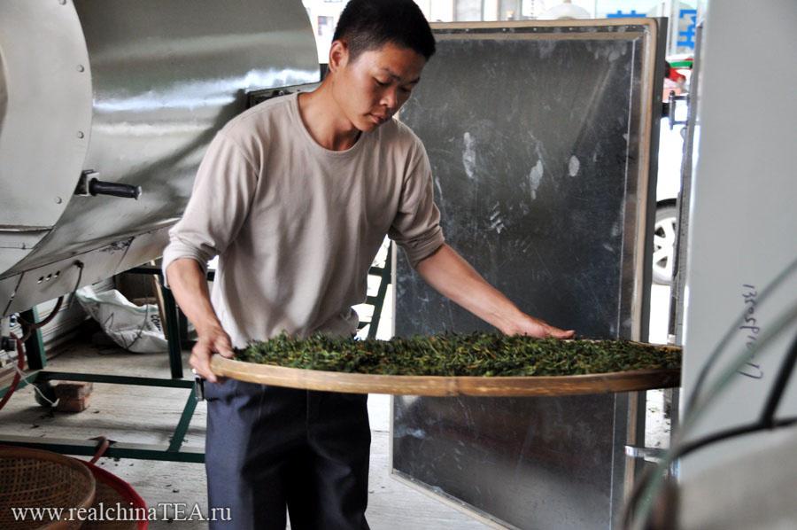 Финальная просушка чайного листа Тегуаньинь.