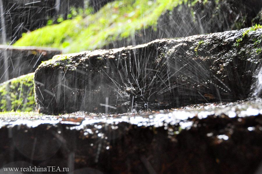 Уишань - край водопадов, звонкой капели, утесов и чая.