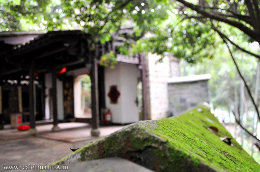Уишань - это край древнейших монастырей. Они затеряны в горах и лесах. Найти их непросто. И это удивительные места, где живут удивительные люди.
