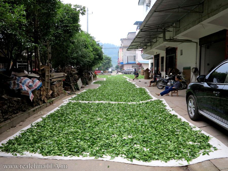 Весной улицы Уишаня сплошь засыпаны свежим чайным листом.
