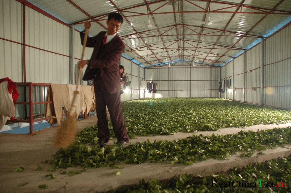 Производства чая в Китае