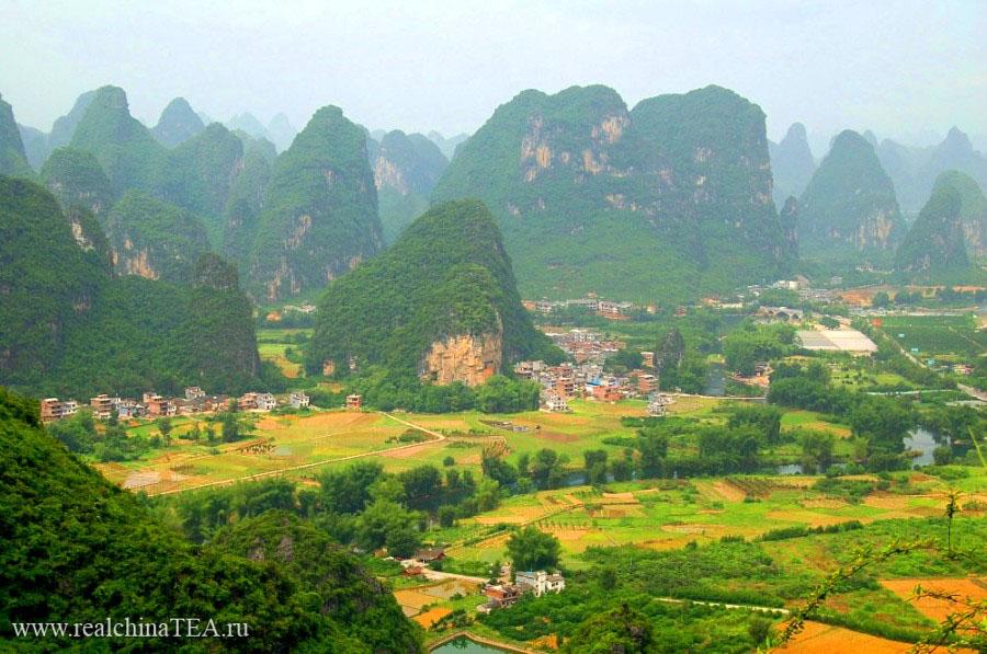 Гуйлинь - одно из красивейших мест в Китае. Именно тут выращивают османтус.