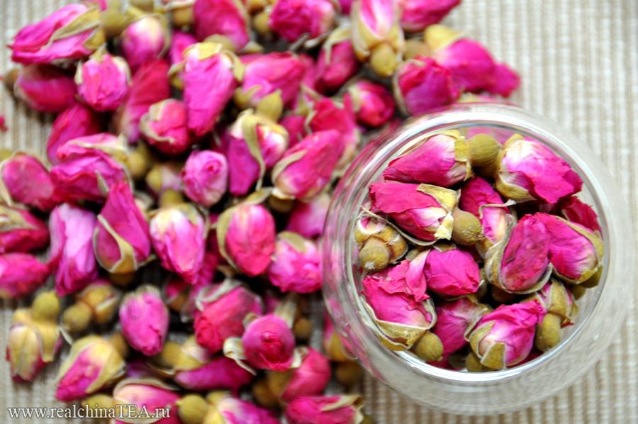 Бутоны китайской розы - маленькие и невероятно позитивные.