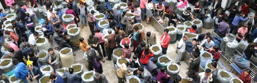 Фото Пятиминутная экскурсия на один из самых больших чайных рынков в мире